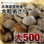 あさり アサリ 厚岸産 殻付あさり大サイズ 500g ギフト プレゼント用 北海道 内祝 お歳暮 特急便