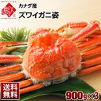 カニ かに ズワイガニ ズワイ ずわい 姿 900g×3 カナダ産 蟹 カニ 冷凍 北海道 お土産 お取り寄せグルメ ランキング