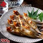 ししゃも シシャモ 柳葉魚 北海道産 メス 40尾 本ししゃも 本物 若ししゃも 2セット以上で送料無料 新物 北海道 ギフト プレゼント用 内祝