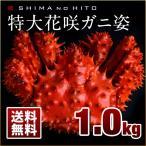 Hanasaki Crab - 特大 花咲ガニ 姿 約1.0kg 1〜2人前(ボイル済み) ロシア産 かに 花咲 蟹 かに ボイル済み 内祝 2018年 新物 送料無料 数量限定
