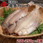 生干し 昆布 干物 カレイ 北海道産 なめたカレイ 200-250g ×3尾セット なめた干物 ギフト プレゼント用 北海道 内祝