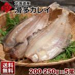( 生干し 昆布 干物 シリーズ ) カレイ 北海道産 なめたカレイ 200-250g ×5尾セット ( なめた干物 ) 送料無料 ギフト プレゼント用 北海道 内祝