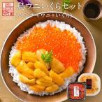 【無添加】島うにイクラ丼セット 生キタムラサキウニ 90g+昆布だしイクラ 70g 【送料無料】ギフト プレゼント用 北海道 内祝 お祝い