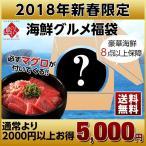 福袋 2018年 新春「北海道産マグロ」入り福袋 送料無料 海鮮 300個限定