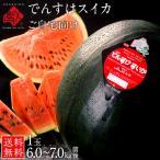 でんすけすいか スイカ ご自宅用 北海道 当麻産 送料無料 1玉で6kg前後 豪華にかぶりつける大きさが特徴 でんすけスイカ 西瓜 良品 お土産