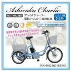 らくらく電動アシスト三輪自転車 高齢者 20インチ 電動アシスト三輪自転車 スカイブルー MG-TRM20EB 3輪電動アシスト自転車 熟年時代社