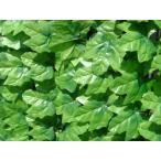 グリーンフェンス 1×3m 日よけ 省エネ 壁面緑化 緑のカーテン 目隠し m ガーデンフェンス トレリス 代引不可