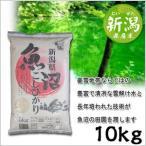 米 日本米 特Aランク 産地直送 25年度産 新潟県 魚沼産 こしひかり 10kg (5kg×2袋) JA直送