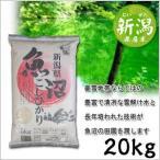 米 日本米 特Aランク 産地直送 25年度産 新潟県 魚沼産 こしひかり 20kg (5kg×4袋) JA直送