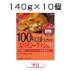 10食セット マイサイズ スパイシーチキンカレー 辛口 140g×10食 1セット レトルトカレー レトルト食品 大塚食品