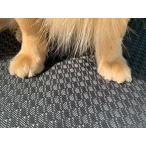 滑り止めマット 犬 150cm×2m 厚さ5mm 1枚 グリップ力抜群 安心 お手入れ簡単 水洗い ワンちゃん 猫ちゃん ペットマット ペット用品