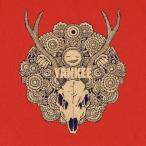 送料無料 米津玄師 YANKEE (初回限定盤)(映像盤)(DVD付) CD+DVD, Limited Edition IRR