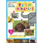 Yahoo!Disk shop suizan新品送料無料 廃盤 NHK DVD ダーウィンの動物大図鑑 はろ~!あにまる きょうのかわいい! ラブリーな動物大集合 コアラ・カピバラ・アカカンガルー