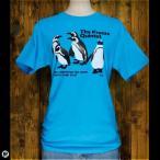 ショッピングTシャツ Tシャツ/メンズ/レディース/6.2oz半袖Tシャツ : Quinted☆Band : カリビアンブルー