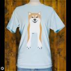 Tシャツ/メンズ/レディース/6.2oz半袖Tシャツ : Shiba Inu(FS) : フロストスカイ