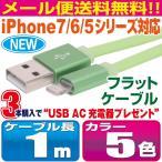 《メール便送料無料》iPhone7/6/5シリーズ対応 シリコン製フラットケーブル 1m カラフル5カラー【LFS10】