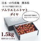 トマトピューレ  送料無料 九州熊本産 ソムリエトマトを3倍濃縮 もぎたてを加工 冷凍1kg