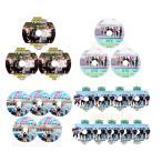 【韓流DVD】BTS 防弾少年団 ボンボヤ【  BONVOYAGE SEASON 1-4 】20枚セット (日本語字幕) ★バンタンBON VOYAGE