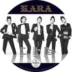 【韓流DVD】KARA ★ PV & TV COLLECTION★K-POP MUSIC