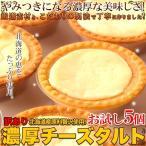 ポイント5倍 訳あり 濃厚 チーズタルト 5個 北海道産原料を贅沢に使用 お試し ポイント消化 送料無料(発送遅いです)