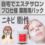 【送料無料】ニキビ脂性肌用 業務用パック 自宅でエステ クレイパック