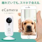 ペットも見守れるホームセキュリティeCamera(イーカメラ)|月額利用料なし・簡単設置・スマホで見守る