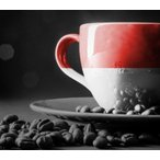 クーポン割 コーヒー豆 おすすめ 通販 インドネシア スマトラ マンデリン SG TABOO 深煎り(フレンチ) 500g