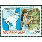 クーポン割 コーヒー豆 おすすめ 通販 ニカラグア リモンシリョ農園 ジャバニカ 中煎り(ハイロースト) 500g
