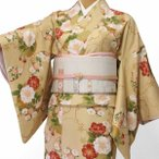 着物 レンタル 京袋帯(白) セット Sサイズ レディース ベージュ 菊