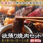 色々食べたい欲張り焼肉セット(2〜3人前)A4等級宮崎牛カルビや牛タン、シロコロホルモン等 バーベキューセット/BBQ/業務用/B級グルメ!