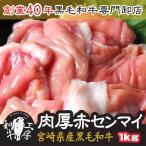 肉 2021 ギフト 鍋 宮崎県産 黒毛和牛 赤センマイ ギアラ 100g×10パック 計1kg ホルモン もつ煮 どて煮 送料無料