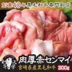 宮崎県産 黒毛和牛 新鮮上 ホルモン 赤センマイ ギア