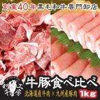 牛豚食べ比べ1kgセット 北海道十勝道南牛モモスライス×九州産豚肉ロース 計1kg すき焼き お歳暮 肉の日 29の日