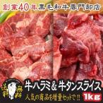 肉 牛タンスライス500g と 特選 牛ハラミ 500g 計1kg  焼肉 送料無料