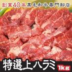 トップチョイス上ハラミ・サガリ たっぷり500g×2パック 計1kg 味付けなし(バーベキュー BBQ)業務用 ホルモン