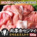 肉 もつ鍋 A5 宮崎県産 黒毛和牛 肉厚 赤センマイ ギアラ 100g もつ煮 どて煮 焼肉 ホルモン