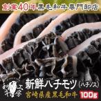 肉 A5 宮崎県産 黒毛和牛 ハチモツ ハチノス 100g ホルモン 焼肉