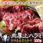 焼肉 御中元 宮崎県産 黒毛和牛 肉厚 上ハラミ サガリ 100g ギフト