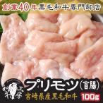 焼肉 御中元 鍋 A5 宮崎県産 黒毛和牛 プリモツ 盲腸 100g ホルモン