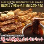 《送料無料》5種選べる焼肉&ホルモンセット(4人前〜5人前)焼肉 セット・業務用・福袋