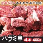 《希少品》トップチョイス牛上ハラミ・サガリ肉厚串