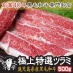肉 超希少品 鹿児島県産和牛極上特選 ホホ肉 ツラミ 牛ほほ肉 500g 秘伝塩こしょう付き 焼肉