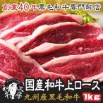 沙朗牛肉 - 九州産 黒毛和牛上ロース 500g×2パック 計 1キロ 焼肉 ギフト 焼肉用の肉 焼肉用肉 黒毛和牛 焼肉セット お歳暮 牛ロース