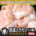 宮崎県産 黒毛和牛 大とろ モツ 小腸 100g×3p計300g