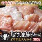 宮崎県産 黒毛和牛 とろ テッチャン 脂付 しま腸 100