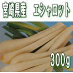 エシャロット 栽培用球根 300g(充填時) 国産