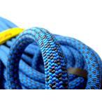 テンドン クライミングロープ アンビション 10.5mm 60m コンプリートシールド加工 ブルー