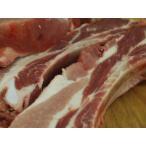 鹿児島産豚 スペアリブ 1キログラム