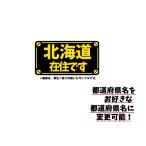 各都道府県 在住 文字 ロゴ カッティングステッカー 全都道府県から指定可能 選べる4サイズ 2色デザイン プレートルック