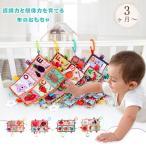 短納期 歯固め おもちゃ 赤ちゃん カミカミ ガラガラ 音が出る タグ 布のおもちゃ 知育玩具 洗える 0歳 1歳 ベビー 出産祝い ギフト プレゼント
